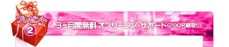 楽々!視力アップマニュアル・トレーニングキット付き(CD-R&完成品トレーニングキット版)